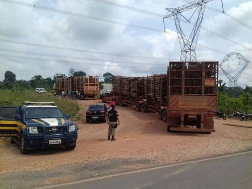Indígenas interditam quilômetro 226 da rodovia BR-222, no sudeste do Pará, em protesto nesta segunda-feira (31). (Foto: Divulgação/Polícia Rodoviária Federal do Pará)